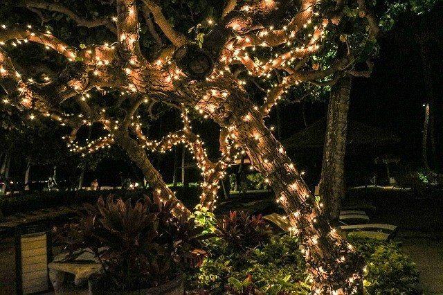 2. fairy lights