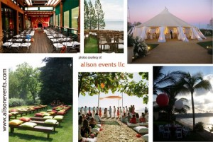 Alison Events Wedding Planning