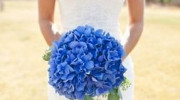 Something Blue - Wedding Bouquet
