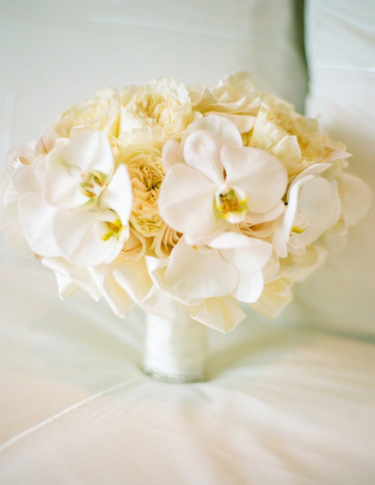 White Orchid Flowers For Weddings - Flowers Healthy