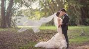 Vera Wang Lark Wedding Dress