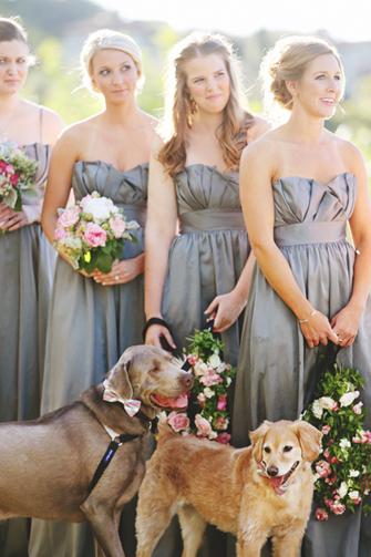 Diana M Lott dianamlottphotography3.com